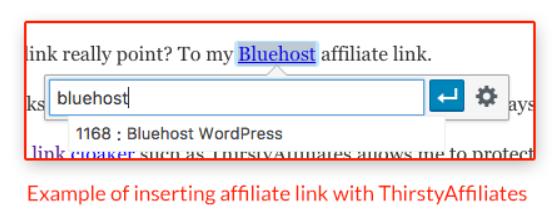 巧用这5个WordPress插件做WordPress网站流量变现插图(5)