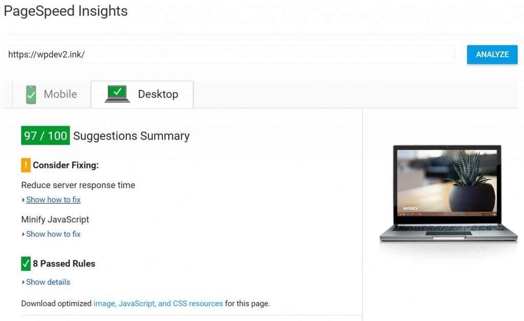 浏览器缓存警告修复后的PageSpeed Insights评分