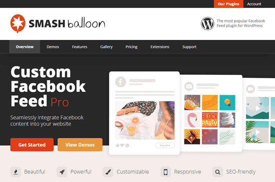custom-facebook-feed-pro