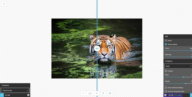 WebP图像示例