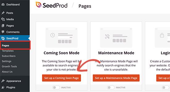 SeedProd插件Coming Soon模式