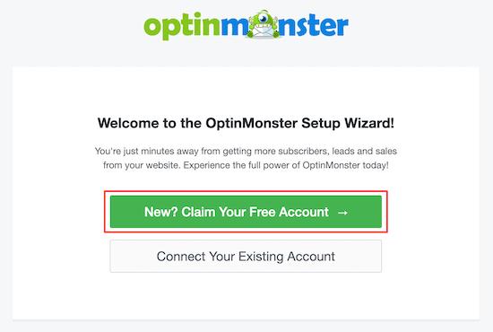 optinmonster插件按照向导