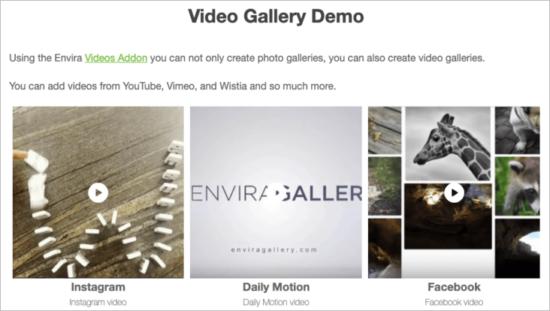 Envira-Gallery-