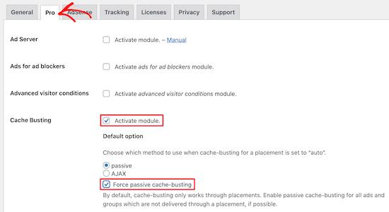 Advanced Ads插件缓存设置