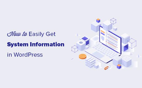 如何获取WordPress服务器系统信息
