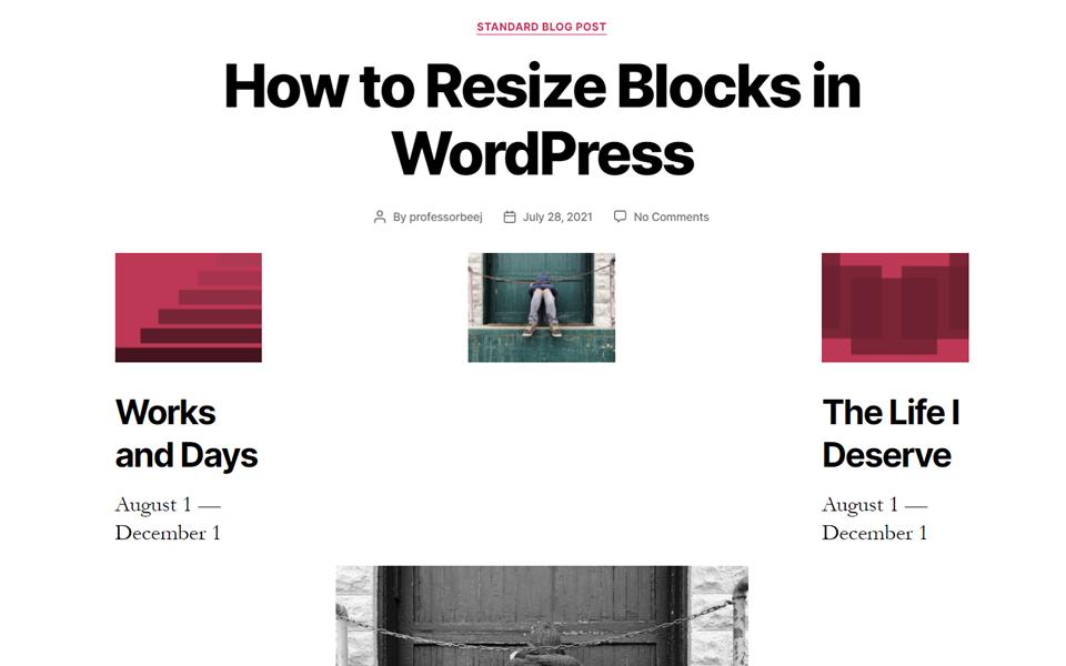 古腾堡编辑器教程:如何调整WordPress区块大小-10