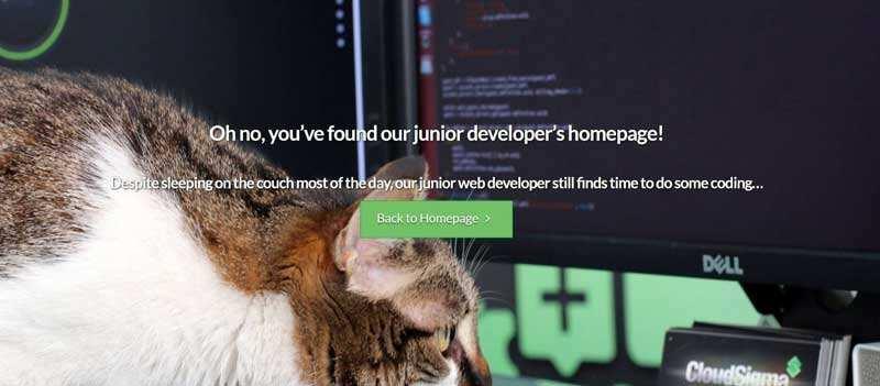 WordPress网站404错误页面教程-2