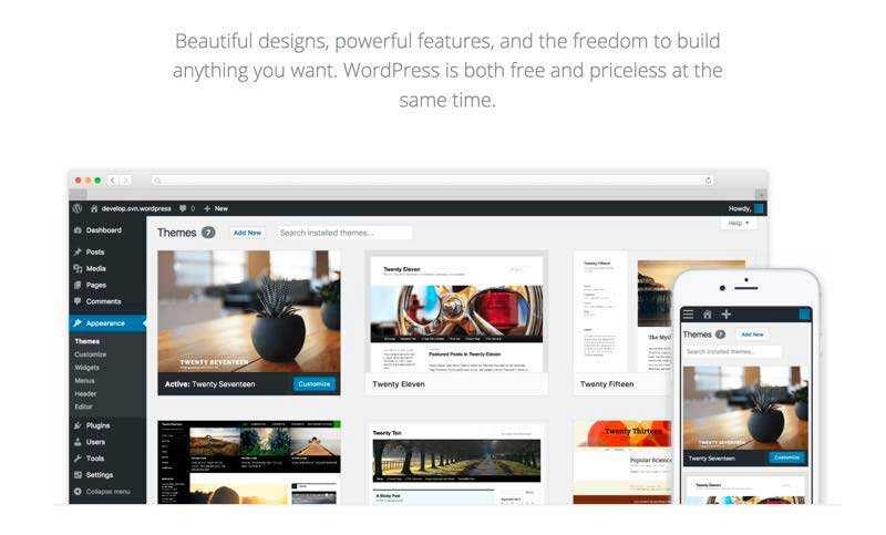 什么是WordPress主题及如何挑选一款好主题-1