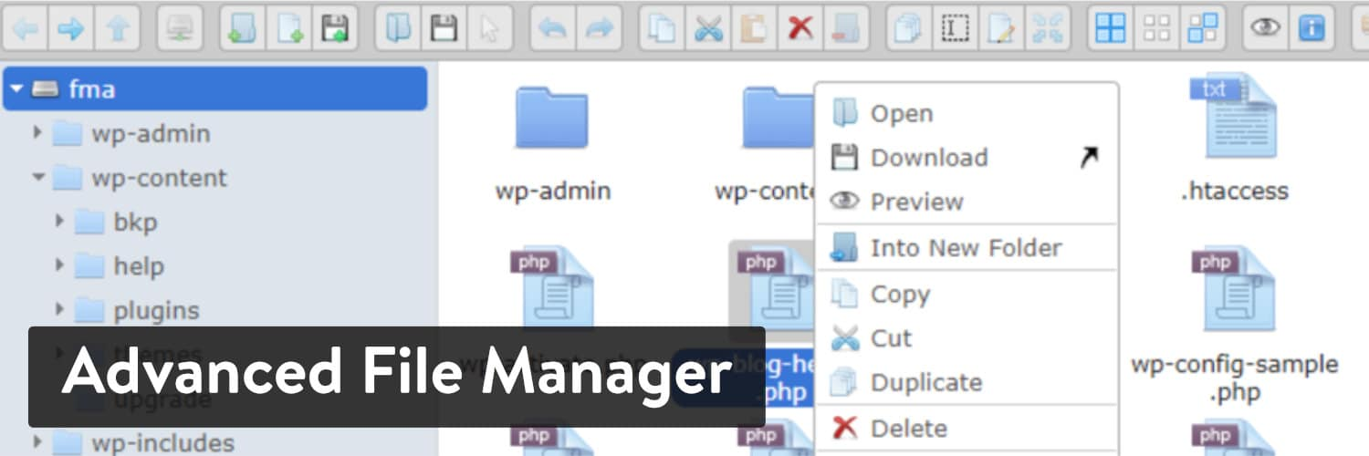 Advanced File Manager插件