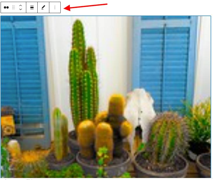 Flickr嵌入区块设置和选项