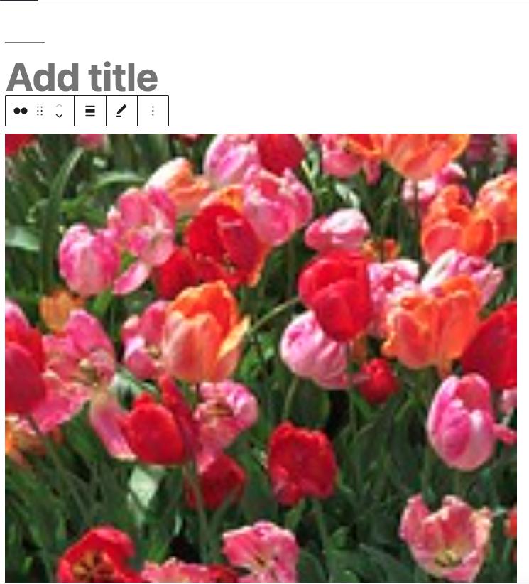 Flickr嵌入区块图片