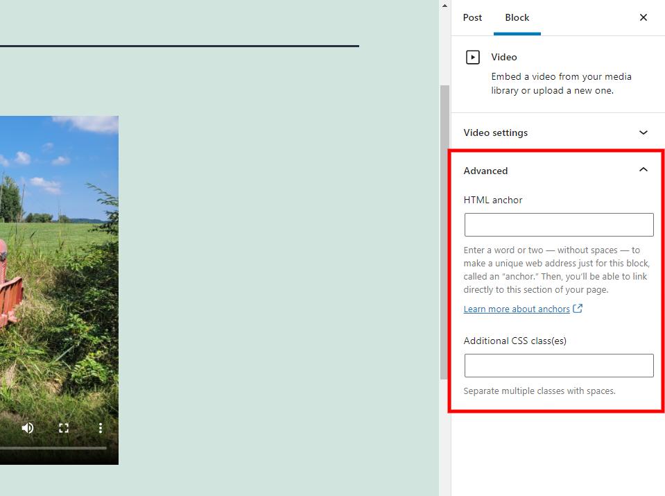 WordPress视频区块高级设置