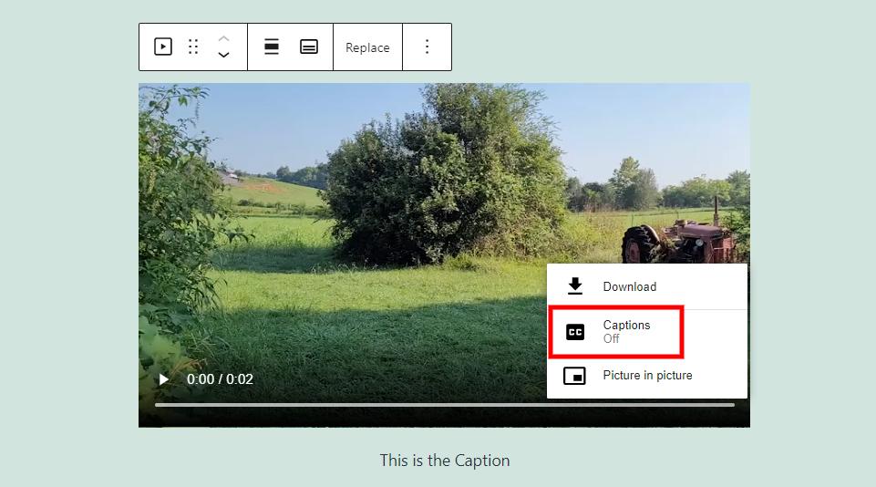 视频区块字幕选项