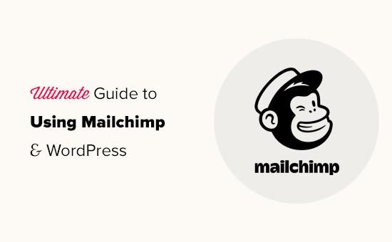 Mailchimp邮件订阅插件终极教程