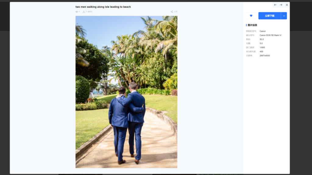 Picpapa-图库资源网站WordPress主题模板插图5